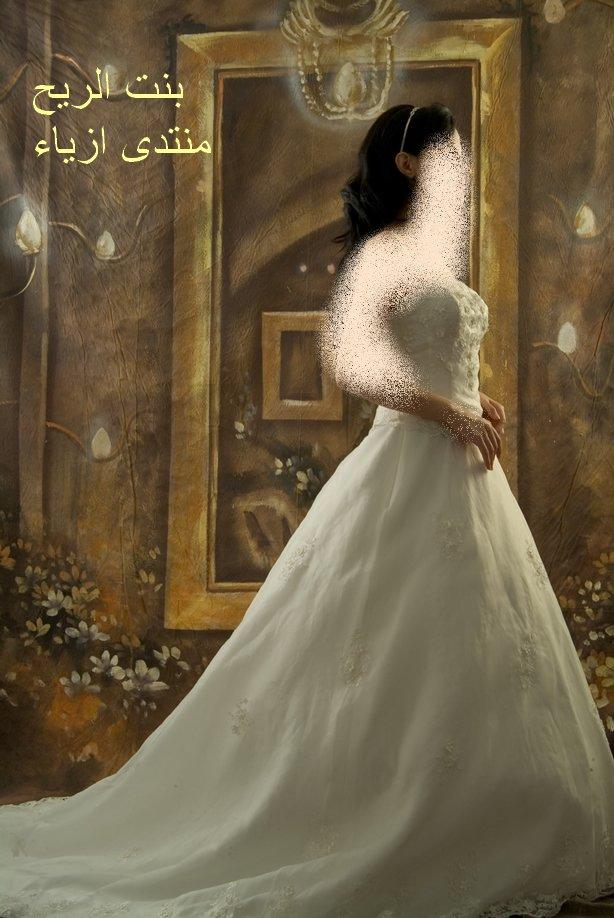 فساتين زفاف , فساتين زفاف جديدة new_1451746004_805.j