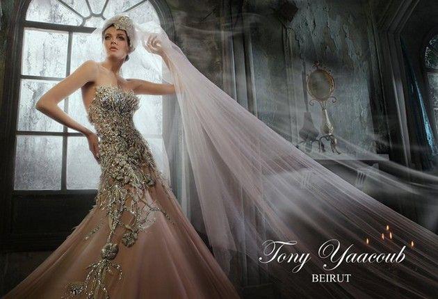 فساتين طونى يعقوب للسهره , اجدد فساتين طونى يعقوب ,Dresses magnificence new_1451817516_163.j