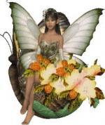 الصورة الرمزية زهرة الحب